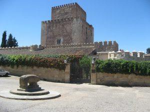 Castillo de Enrique II de Trastámara coon el con el Verraco en primer plano